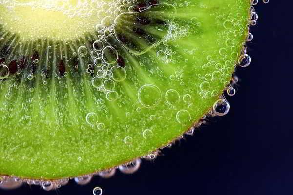 Продукты жизнедеятельности. Какие вещества необходимы для жизнедеятельности организма? Биология