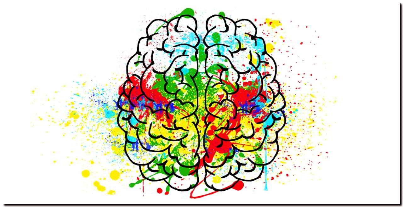 Развитие мозга ребенка. Полезные вещества