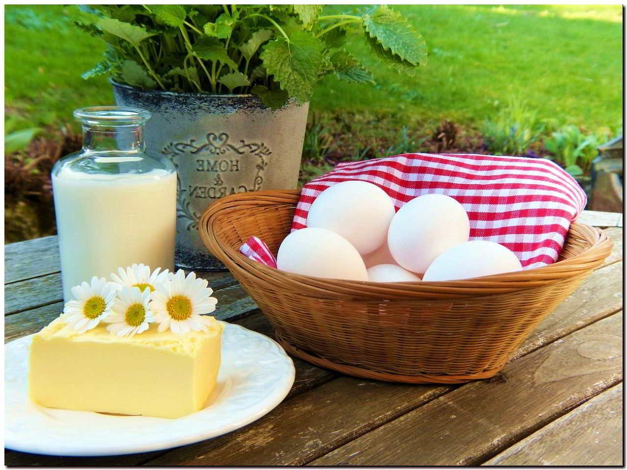 молочные продукты с кальцием